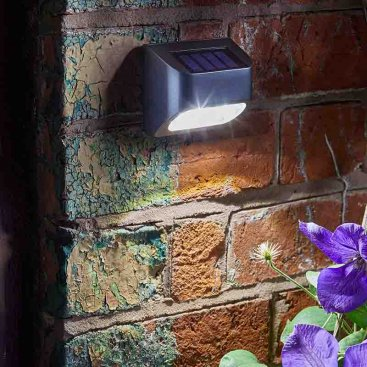 Premier Fence, Wall and Post Light, 10L
