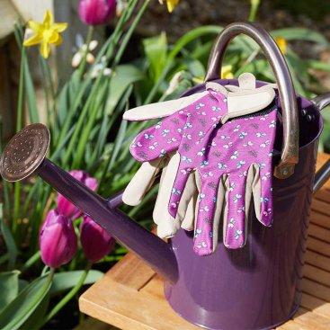 Flutterfly Smart Gardeners M8