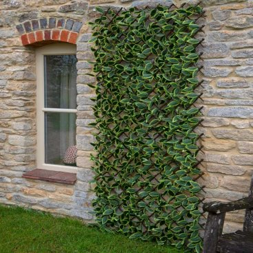 Hosta Leaf 180 x 90cm Trellis
