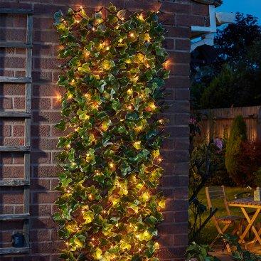 Topiary Trellis