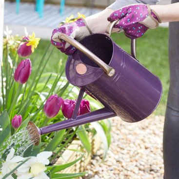 Watering Can 4.5L, Violet