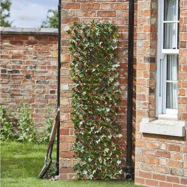 Maple Leaf 180 x 60cm Trellis