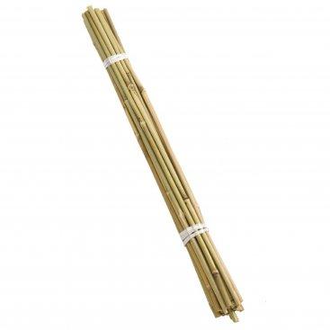 120cm Bamboo Canes Bundle 20