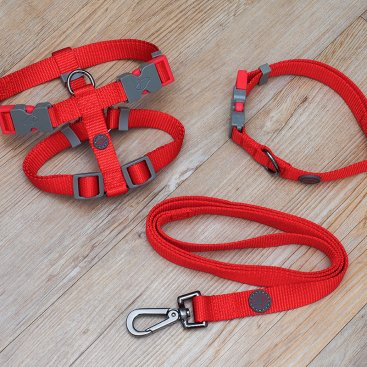 WalkAbout Collars & Leads