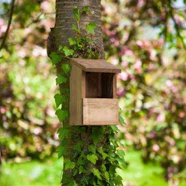 Robin Nest Box Classic, FSC 1