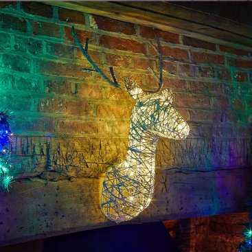 Sparkly Stag