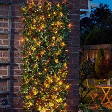 Solar In-Lit Ivy 180 x 60cm Trellis