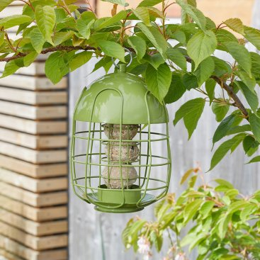 Compact Squirrel Proof Feeders