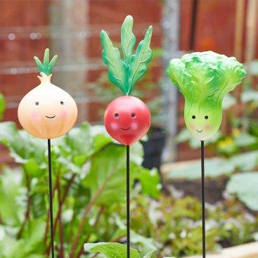 Veggies - Lettuce, Onion, Radish Loony Stakes