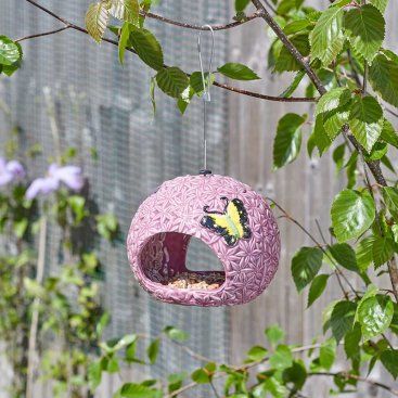 Allium Fly Through Feeder
