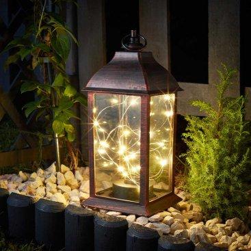 Firefly Dorset