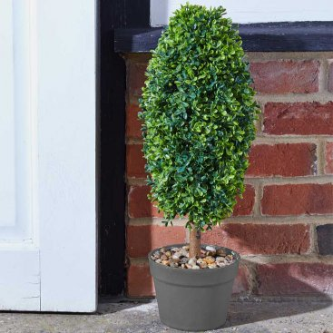 Uovo Topiary Tree