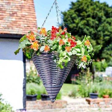 Hanging & Patio Gardening