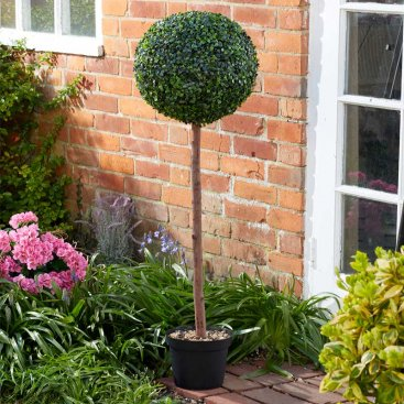 Uno Topiary Tree - 120cm