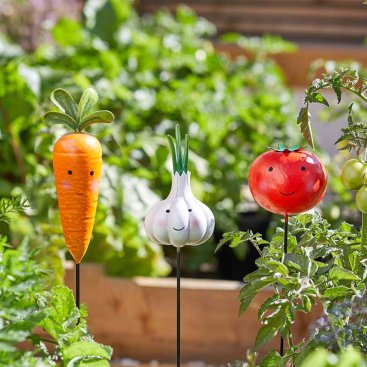 Veggies - Carrot, Garlic, Tomato Loony Stakes