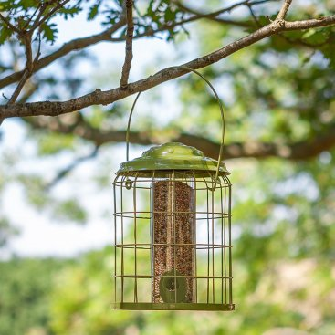 Premier Squirrel Proof Feeders