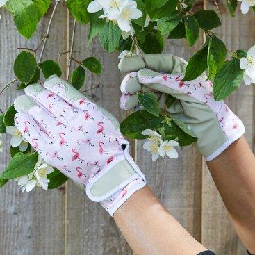 Flamboya Flamingo Smart Gardeners M8