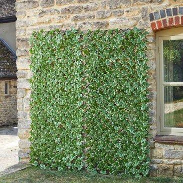 Ivy Leaf 180 x 90cm Trellis