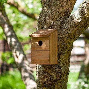 Nest Box Classic, FSC 1