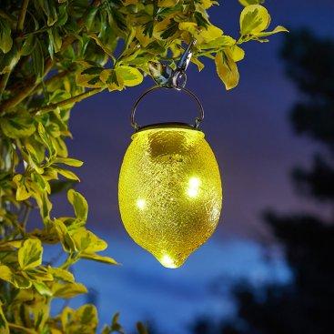 Solar Funky Fruit & Veg