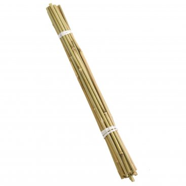 60cm Bamboo Canes - Bundle of 20