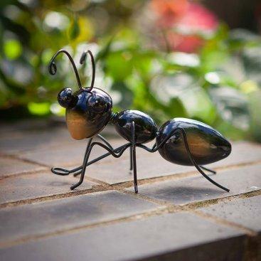 Ant Large